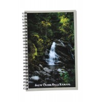 Snow Creek Falls Journal