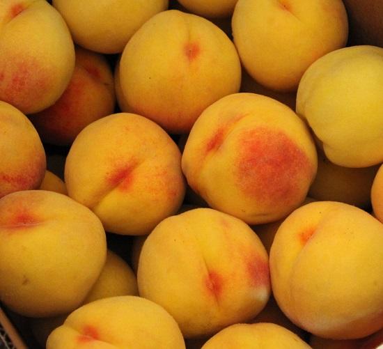 Canning Fresh Peaches