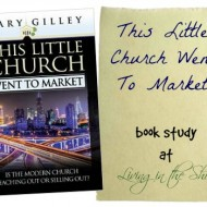 A Church That Misunderstands Worship:  How Shall We Then Sing?  {book study}
