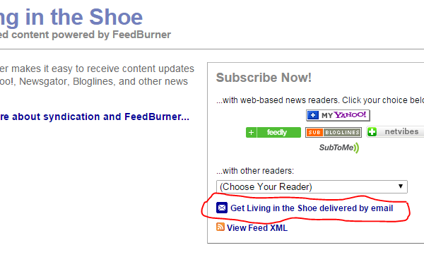 Alternatives to Shoe Weekly Newsletter