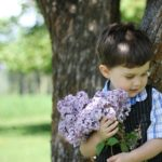 Lilacs . . . and Kids